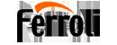 Ремонт котлов ferroli